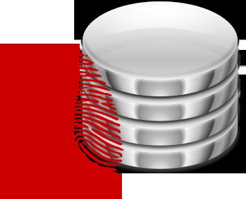 Database Fingerprinting
